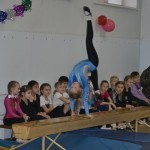 Соревнования по спортивной гимнастики.