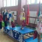Традиционный Открытый турнир по художественно гимнастике