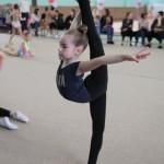 Турнир по художественной гимнастике в городе Москве