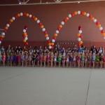проведение традиционного открытого турнира по художественной гимнастике «Бронничаночка 2018»
