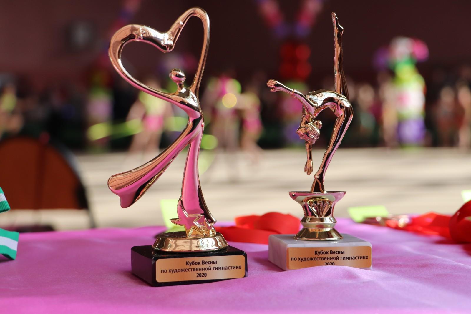 Традиционные соревнования по художественной гимнастике «Кубок Весны»